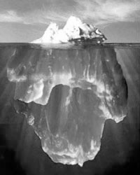 Our project managers see more than the tip of the iceberg!
